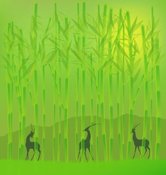 Bamboo grove vector