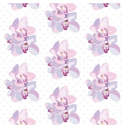Orchid flowers pattern vector image