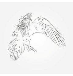 Sketch of Crow in vector image