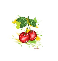 cherries with colorful splashes vector image vector image
