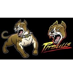pitbull dog angry vector image vector image