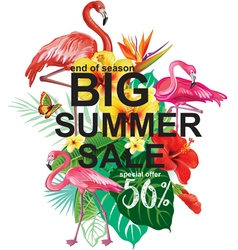 Template for summer sale Advertisement vector image vector image