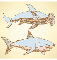 Sketch scary sharks in vintage style vector