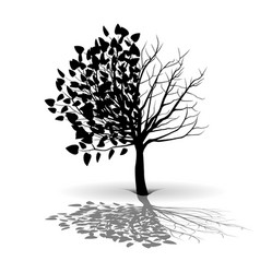 Plant tree silhouette vector