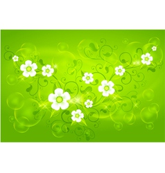 spring floral green vector image