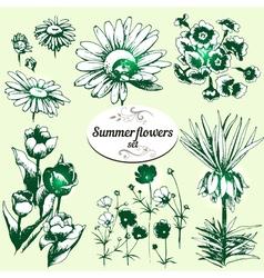 summer flowers set vector image