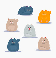 collection of cute cats vector image