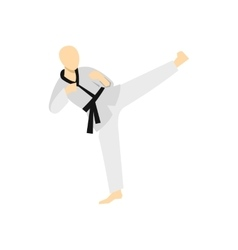 Wushu fighting style icon flat style vector