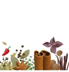 background with spices vector image vector image