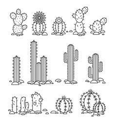 Cacti in the desert isolated objects of a vector