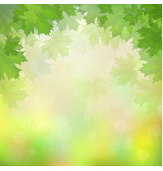 Green maple leaves on blurry background vector