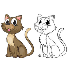 doodle animal character for cute cat vector image vector image