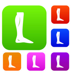 human leg set collection vector image