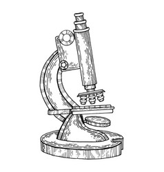 vintage microscope engraving vector image vector image