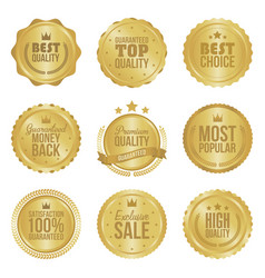 Golden metal best choice premium quality badges vector