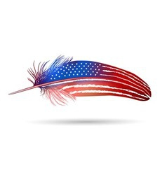 isolated feather American flag vector image
