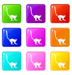 Lemur monkey icons 9 set vector
