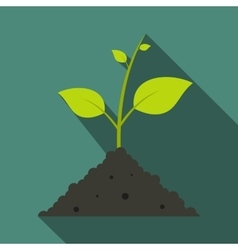 Green sprout in the ground vector image