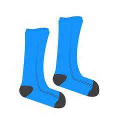 pair of socks vector image