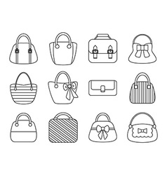 Collection of Female Bags vector image