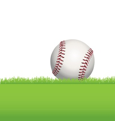 Baseball in the grass vector