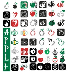 Apples lettering and heart vector