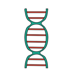 color image cartoon dna molecule vector image vector image