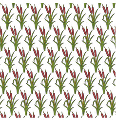 background pattern with reeds vector image