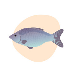 cartoon fish isolated vector image
