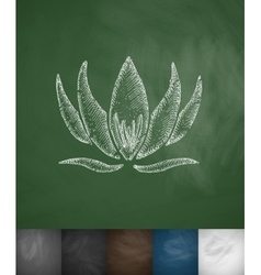 Lotus icon hand drawn vector