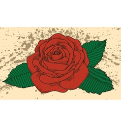 Rose tattoo on the old background with blots vector