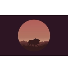 Silhouette of single lion in fields vector