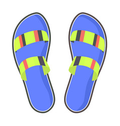 colorful pair of flip-flops isolated vector image