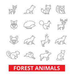 Forest animals elk wolf fox rabbit squirrel vector