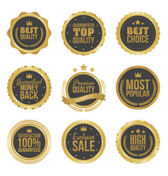 Golden metal best choice premium quality badges vector