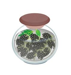 Jar of preserved blackberries or blackberry jam vector