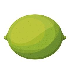 Lemon acid fruit vector