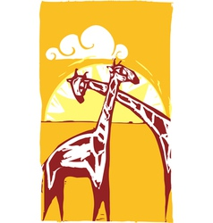 Two Giraffes vector image vector image