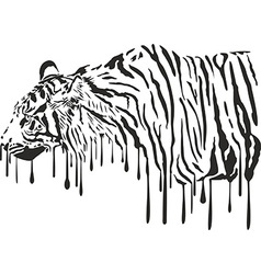 Tiger abstract painting on a white background vector image