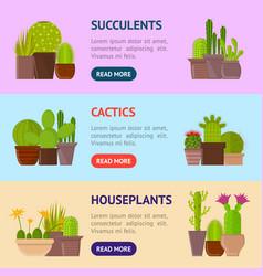 cartoon cactus plant in pots banner horizontal set vector image