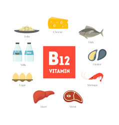 Cartoon food with vitamin b12 infographics vector