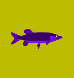 in flat style pike vector image