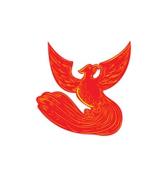 Phoenix rising etching vector