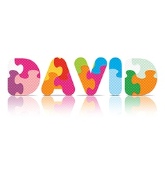 David written with alphabet puzzle vector