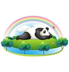 An island with a big panda sleeping vector image vector image