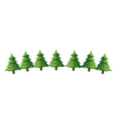 pine tree for christmas decoration ornament vector image