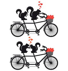squirrels in love on bicycle vector image