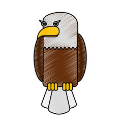 American eagle isolated icon vector