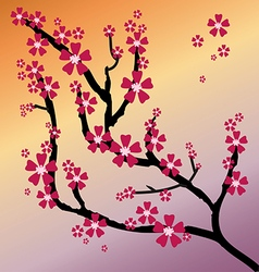 Blossoming oriental cherry against vector