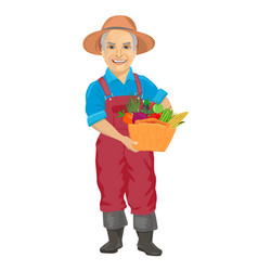 elderly male gardener with basket of vegetables vector image vector image